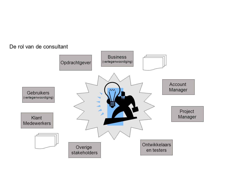 De rol van de consultant