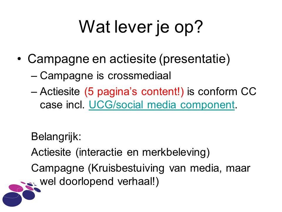 Wat lever je op Campagne en actiesite (presentatie)