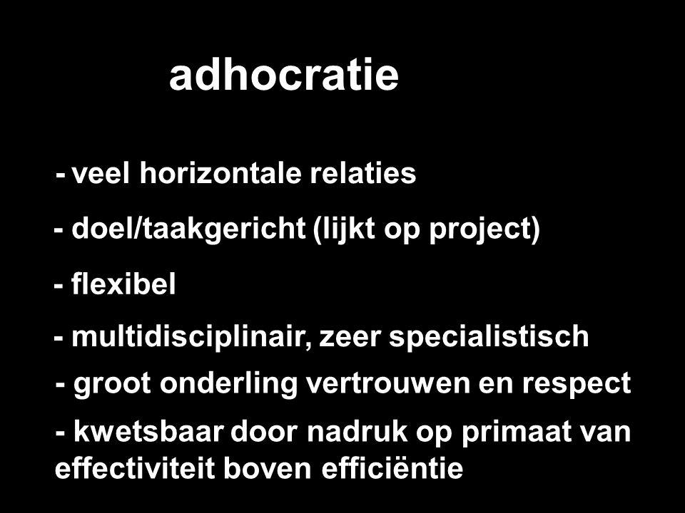 adhocratie - veel horizontale relaties