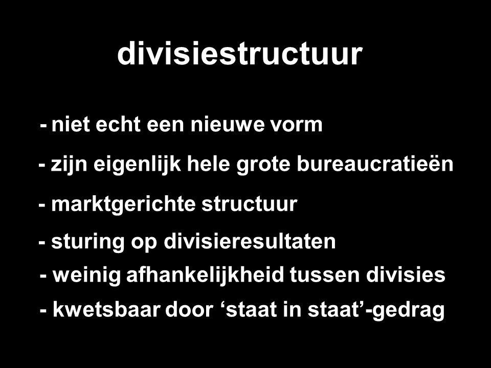 divisiestructuur - niet echt een nieuwe vorm