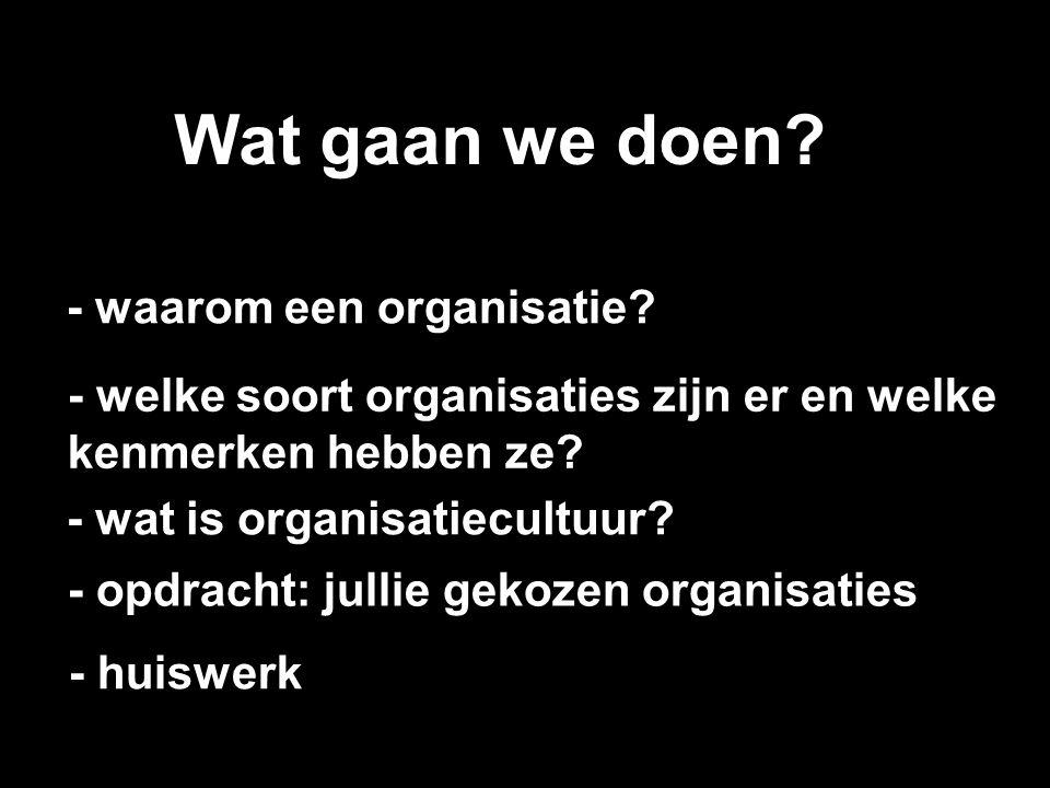 Wat gaan we doen - waarom een organisatie