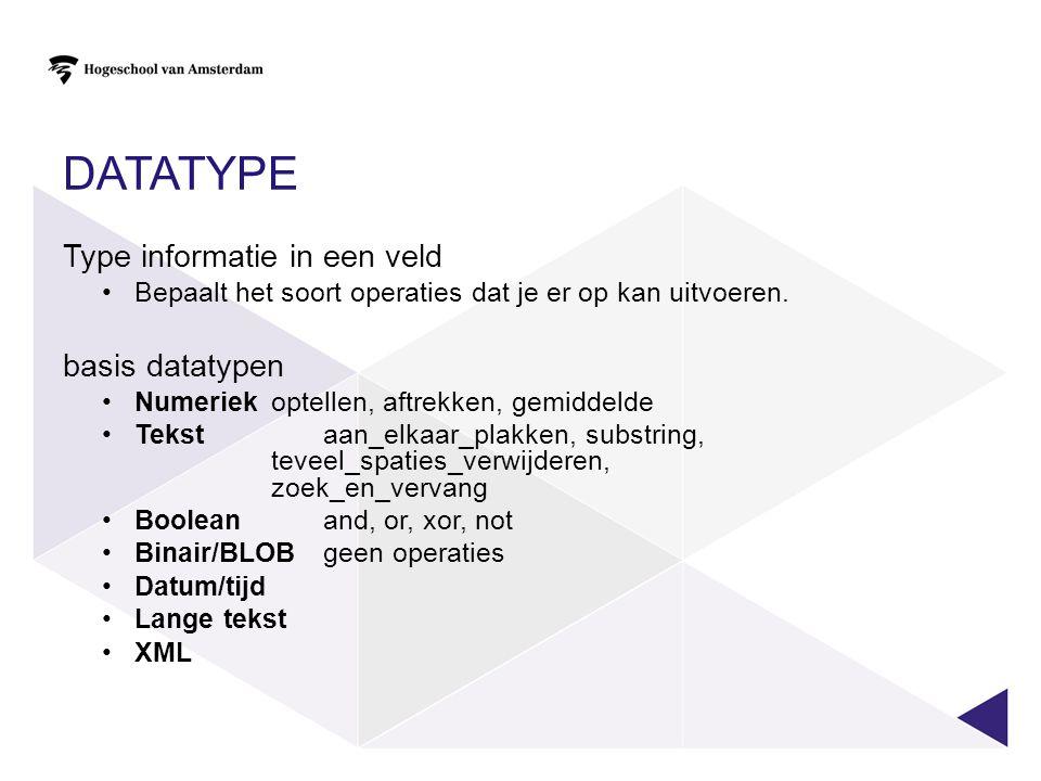 datatype Type informatie in een veld basis datatypen