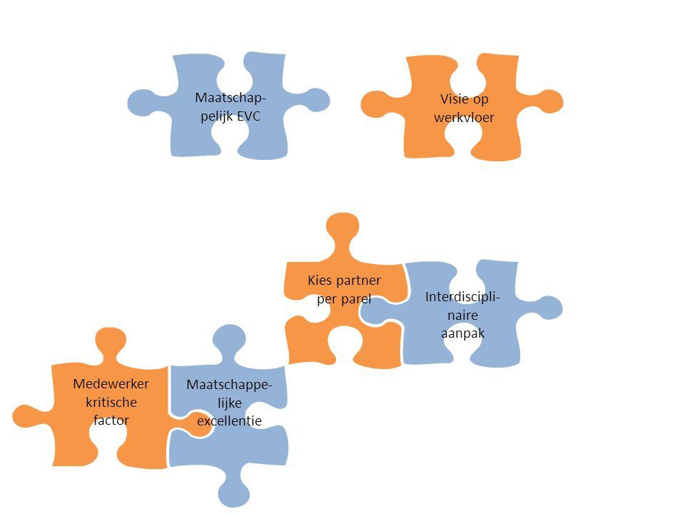 Interdiscipli-naire aanpak