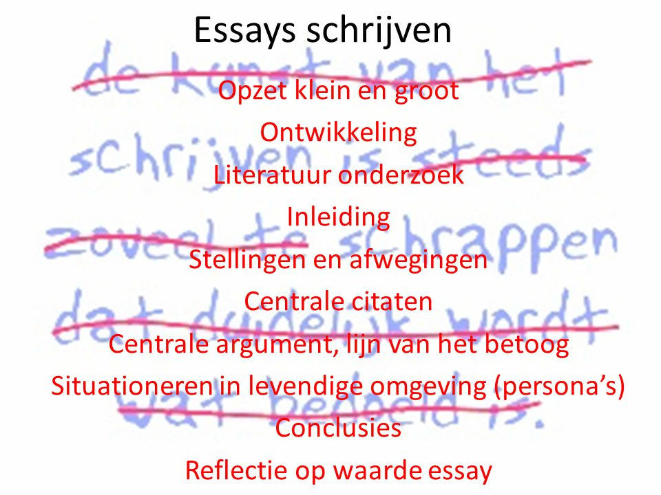 Short Essay 3 Paragraph Outline