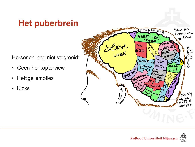 Het puberbrein Hersenen nog niet volgroeid: Geen helikopterview