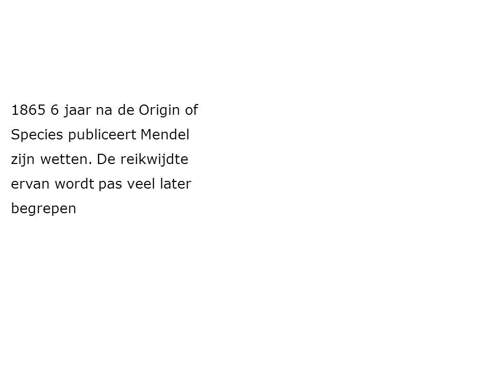1865 6 jaar na de Origin of Species publiceert Mendel. zijn wetten. De reikwijdte. ervan wordt pas veel later.