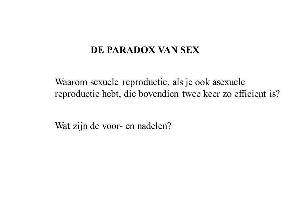 DE PARADOX VAN SEX Waarom sexuele reproductie, als je ook asexuele reproductie hebt, die bovendien twee keer zo efficient is