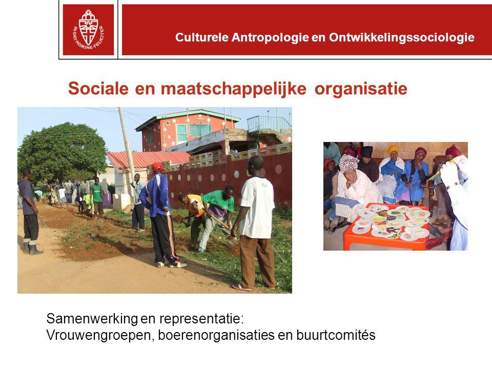 Sociale en maatschappelijke organisatie