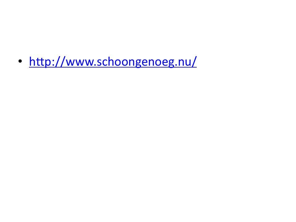 http://www.schoongenoeg.nu/