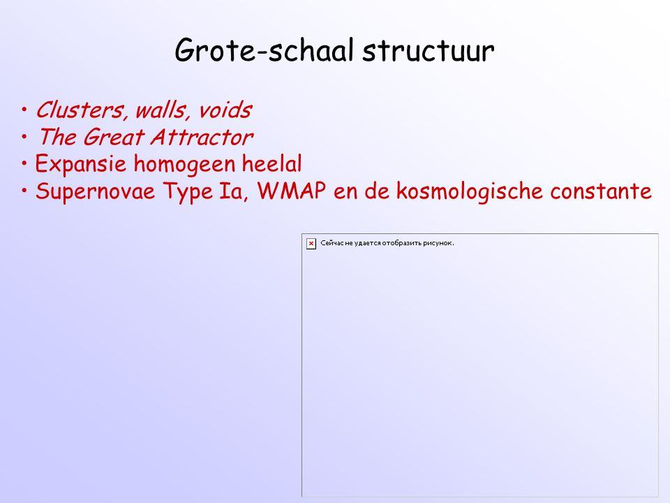 Grote-schaal structuur