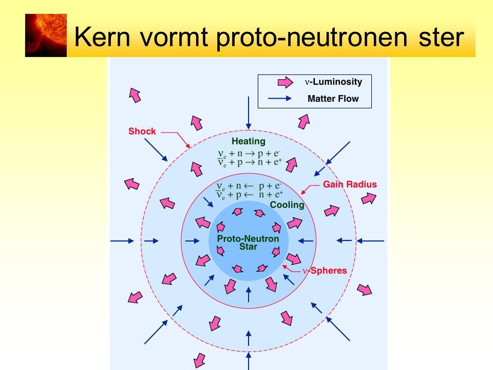 Kern vormt proto-neutronen ster