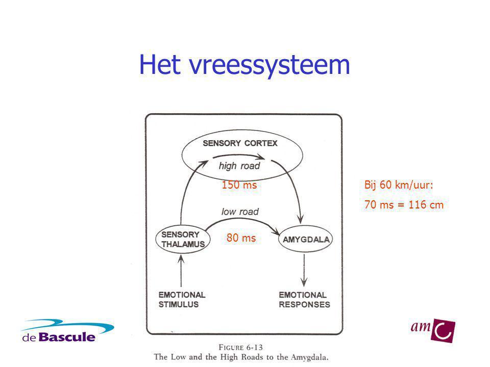 Het vreessysteem 150 ms Bij 60 km/uur: 70 ms = 116 cm 80 ms