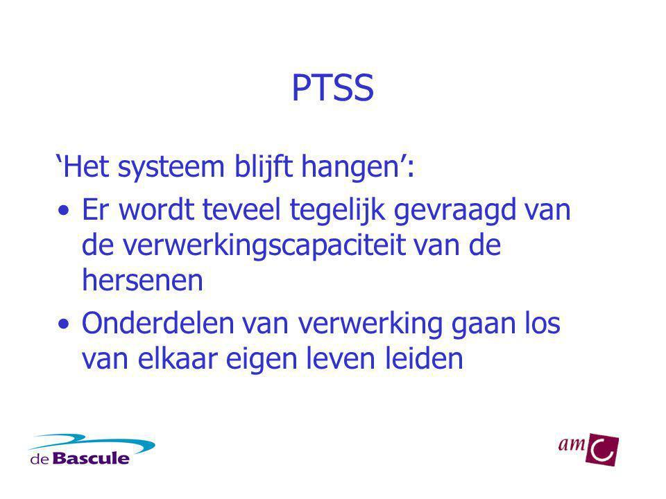 PTSS 'Het systeem blijft hangen':