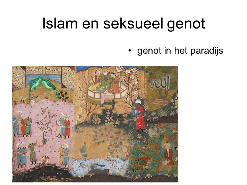 Islam en seksueel genot