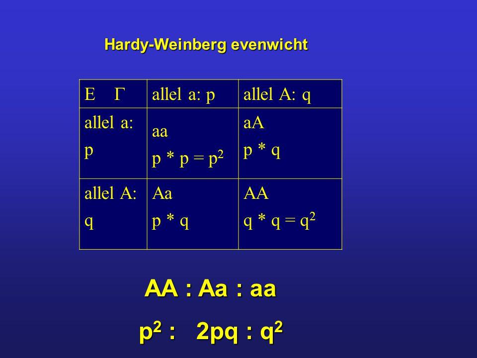 AA : Aa : aa p2 : 2pq : q2   allel a: p allel A: q allel a: p aa