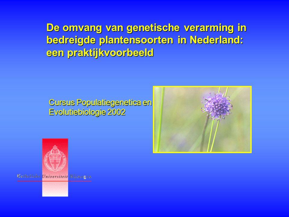 De omvang van genetische verarming in bedreigde plantensoorten in Nederland: een praktijkvoorbeeld
