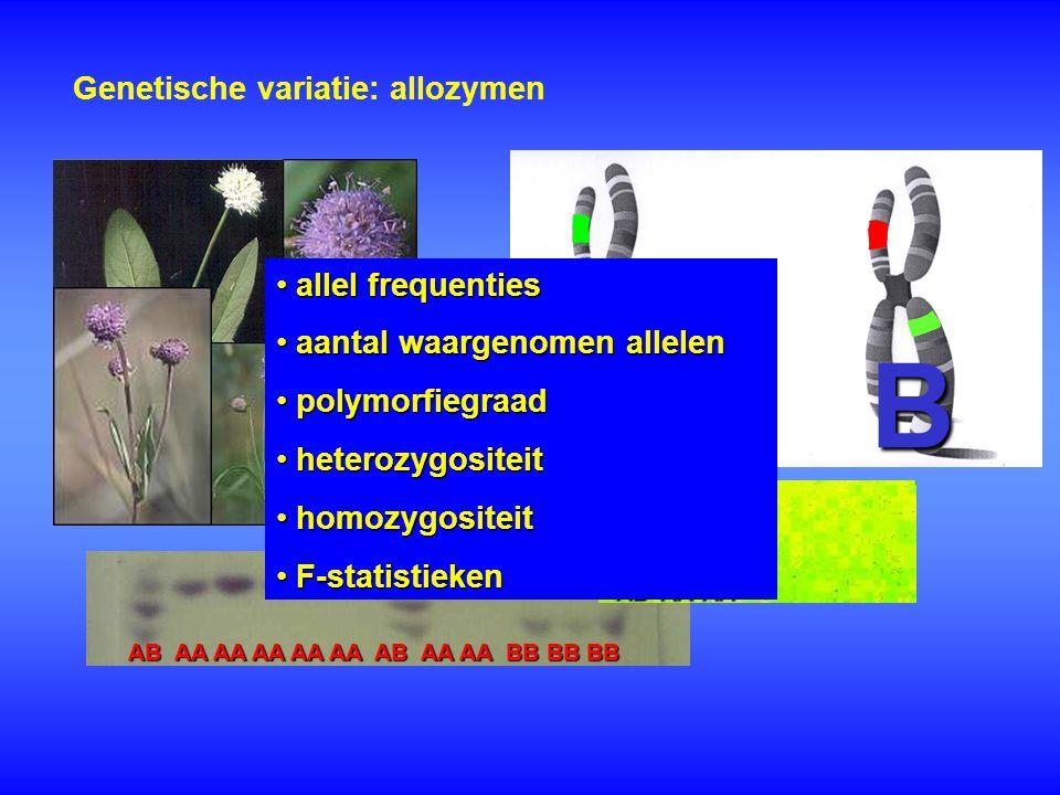 A A B Genetische variatie: allozymen allel frequenties