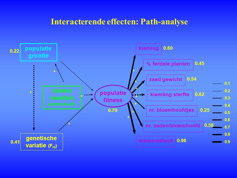 Interacterende effecten: Path-analyse