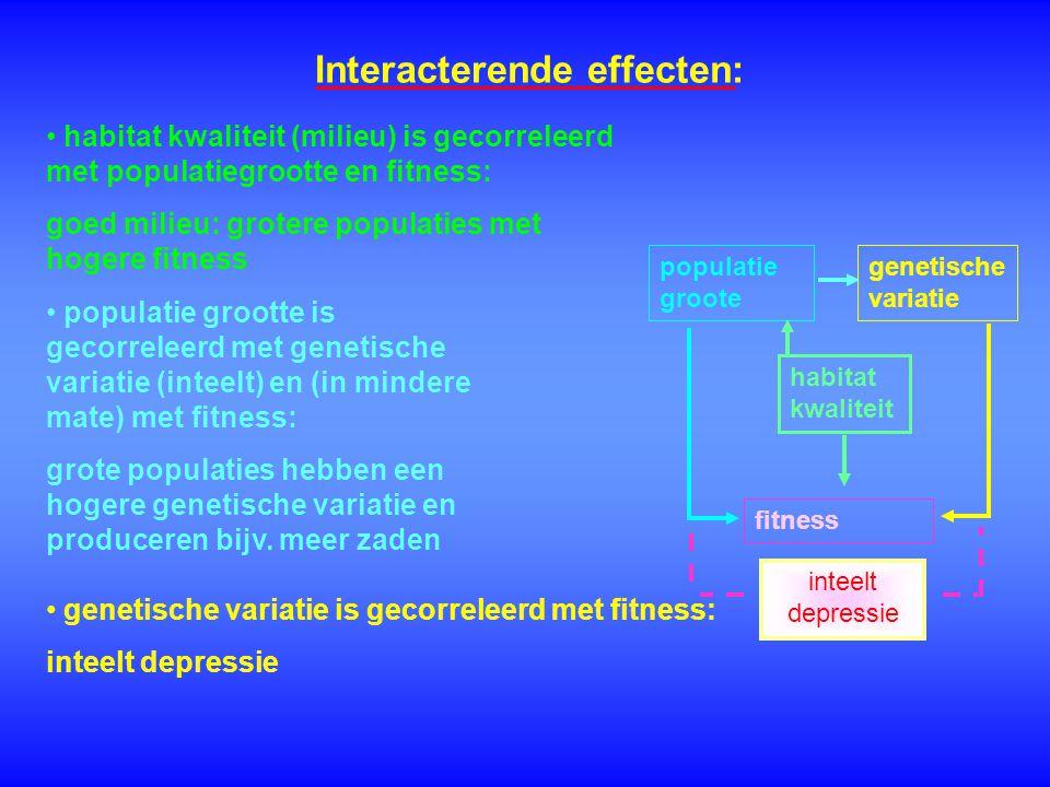 Interacterende effecten: