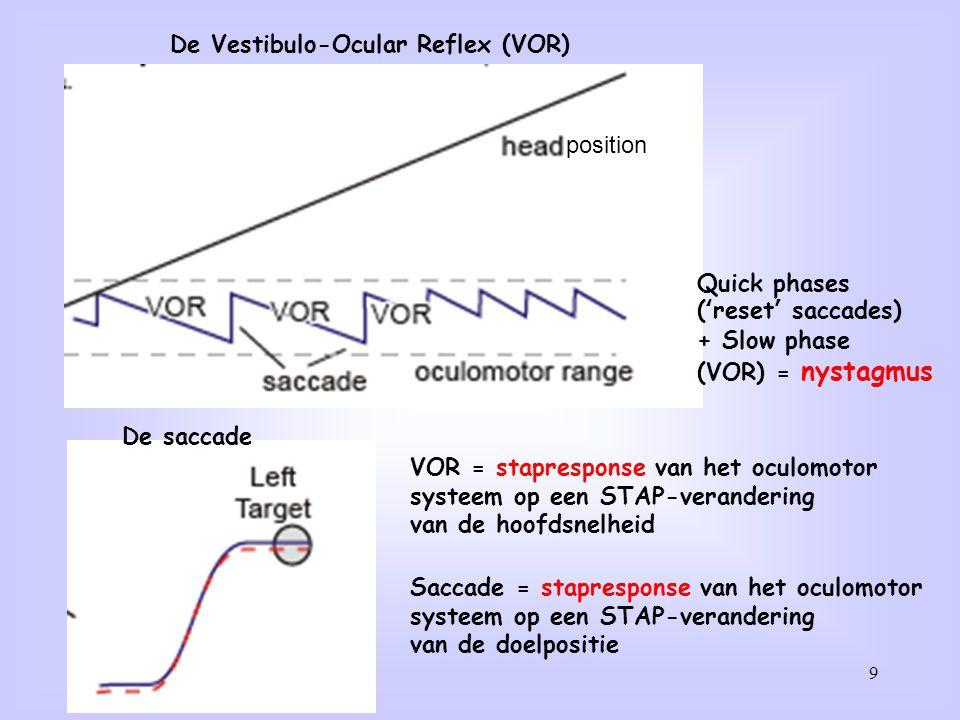 De Vestibulo-Ocular Reflex (VOR)