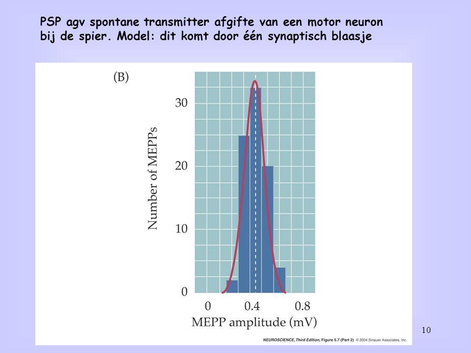 PSP agv spontane transmitter afgifte van een motor neuron
