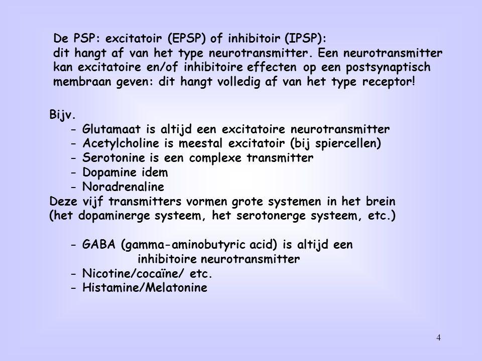De PSP: excitatoir (EPSP) of inhibitoir (IPSP):