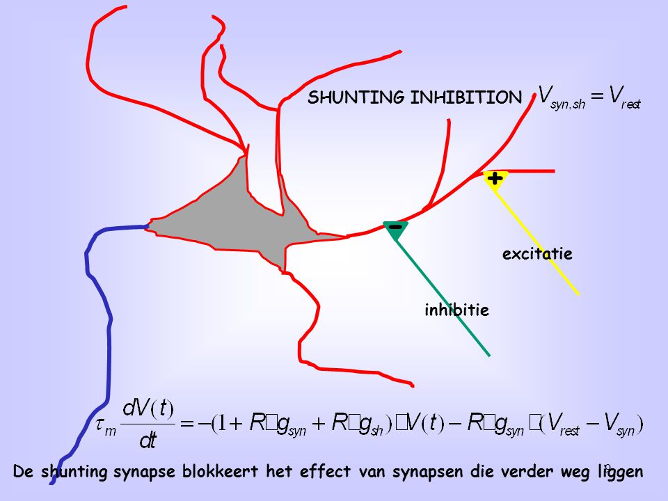 + - SHUNTING INHIBITION excitatie inhibitie