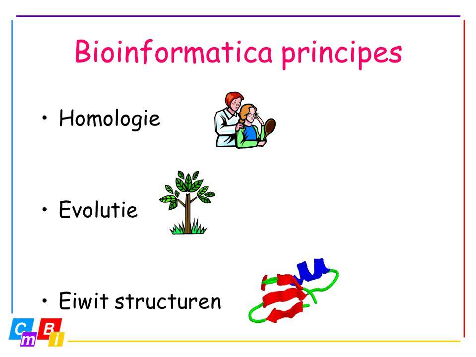 Bioinformatica principes
