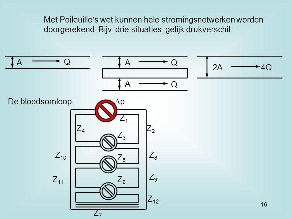 Met Poileuille's wet kunnen hele stromingsnetwerken worden