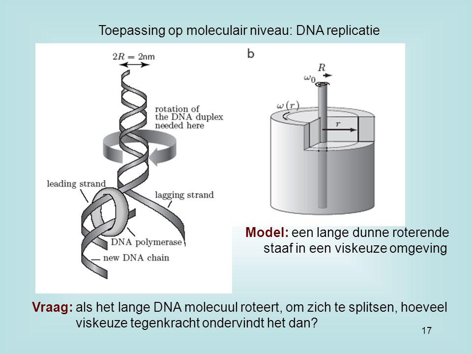 Toepassing op moleculair niveau: DNA replicatie