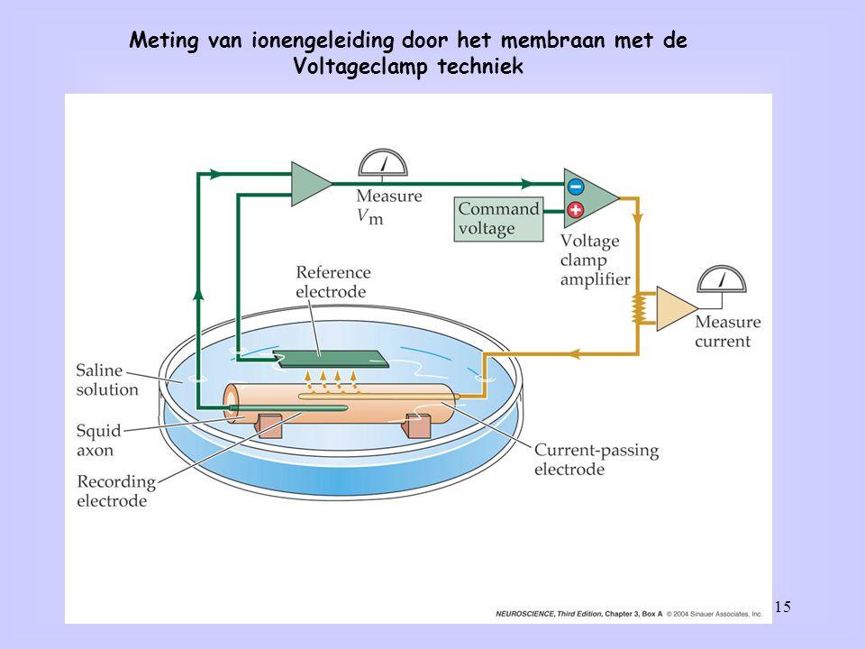Meting van ionengeleiding door het membraan met de