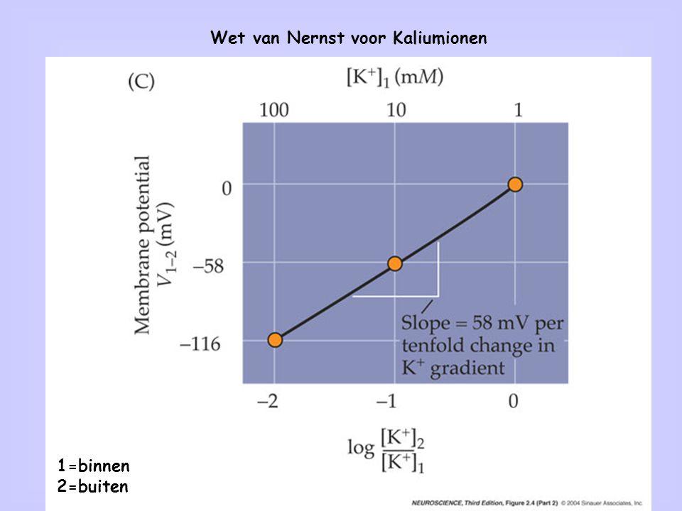 Wet van Nernst voor Kaliumionen