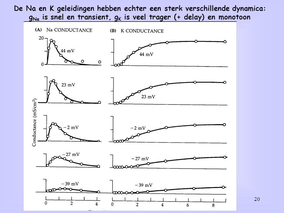 De Na en K geleidingen hebben echter een sterk verschillende dynamica:
