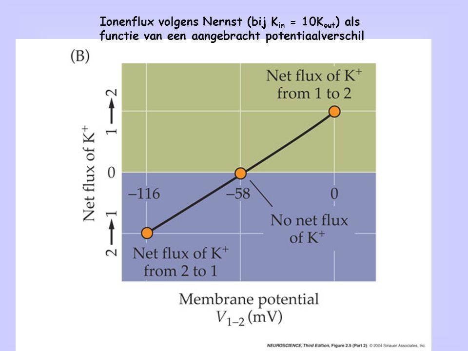 Ionenflux volgens Nernst (bij Kin = 10Kout) als