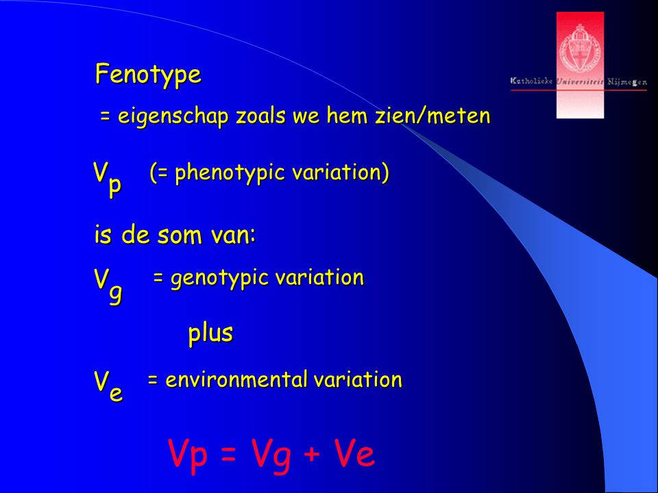 Vp = Vg + Ve Fenotype V p is de som van: V g plus V e