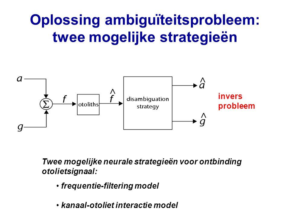 Oplossing ambiguïteitsprobleem: twee mogelijke strategieën