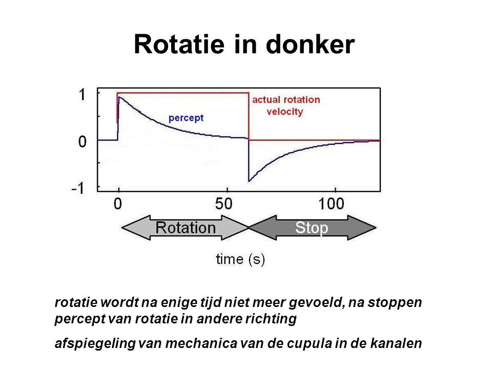 Rotatie in donker rotatie wordt na enige tijd niet meer gevoeld, na stoppen percept van rotatie in andere richting.