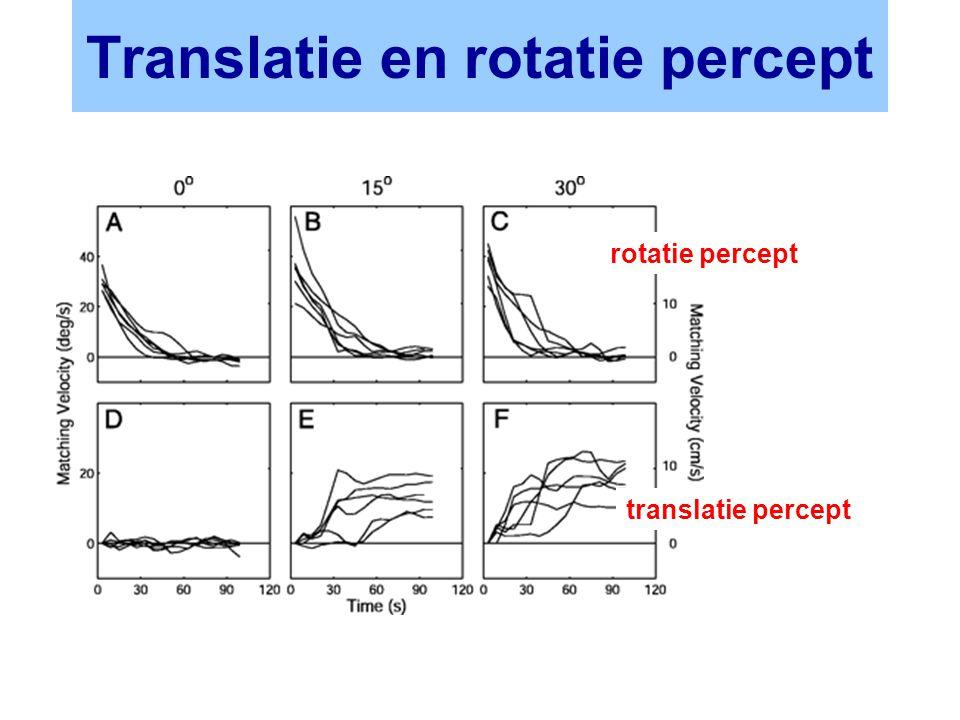 Translatie en rotatie percept