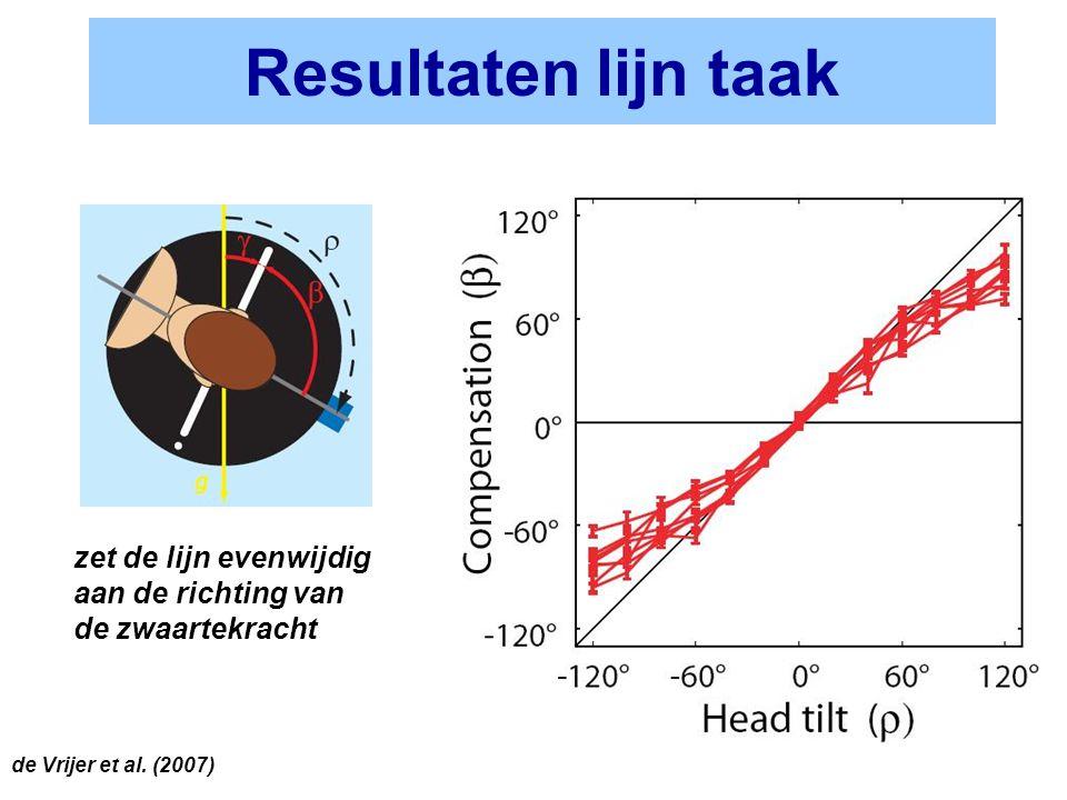 Resultaten lijn taak zet de lijn evenwijdig aan de richting van de zwaartekracht.