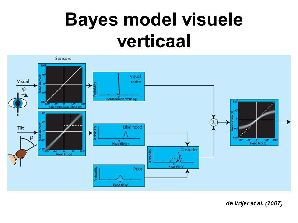 Bayes model visuele verticaal