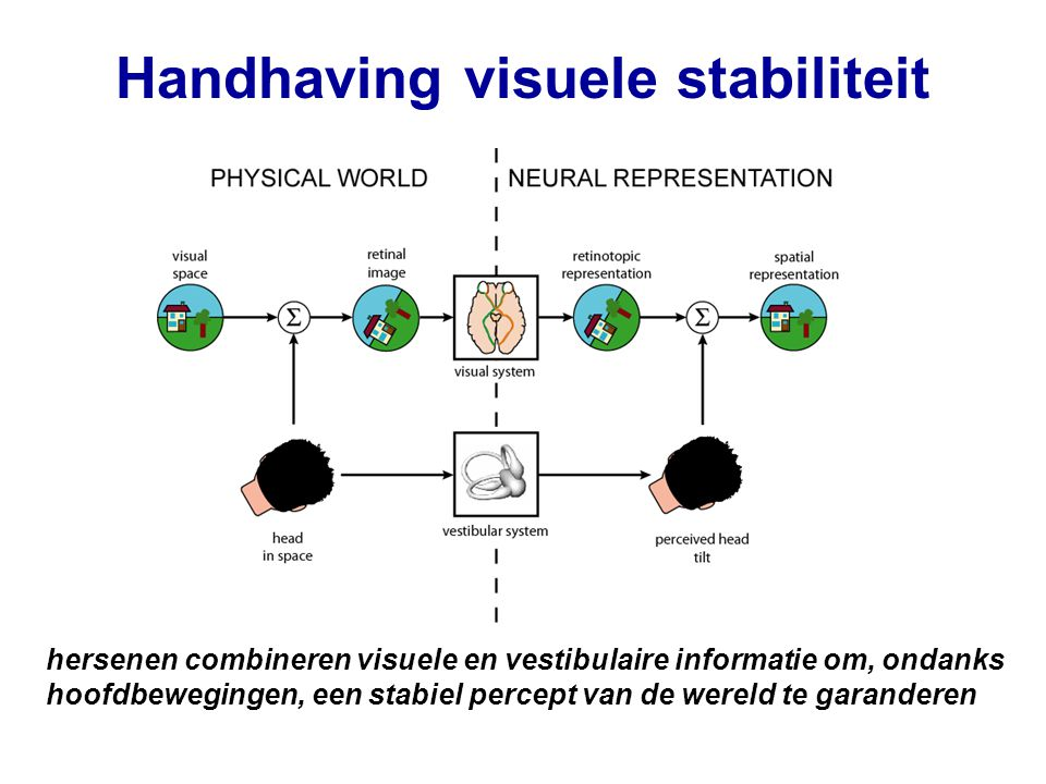 Handhaving visuele stabiliteit