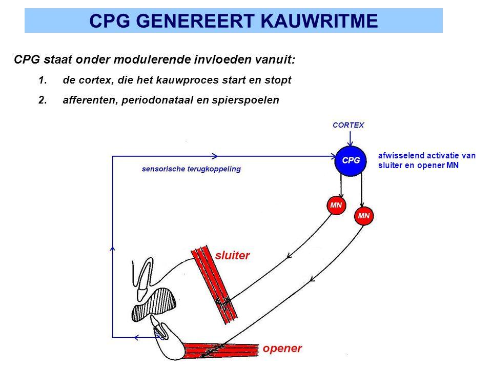 CPG GENEREERT KAUWRITME