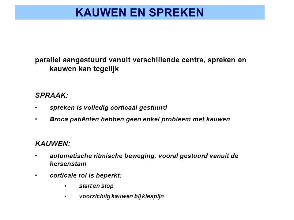 KAUWEN EN SPREKEN parallel aangestuurd vanuit verschillende centra, spreken en kauwen kan tegelijk.