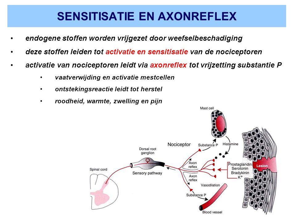 SENSITISATIE EN AXONREFLEX