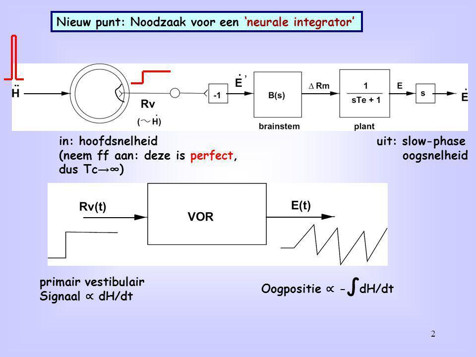 Nieuw punt: Noodzaak voor een 'neurale integrator'