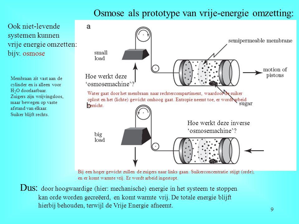 Osmose als prototype van vrije-energie omzetting: