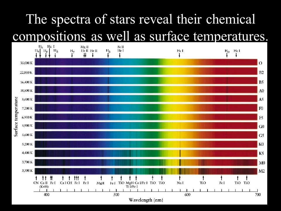 The spectra of stars reveal their chemical compositions as well as surface temperatures.