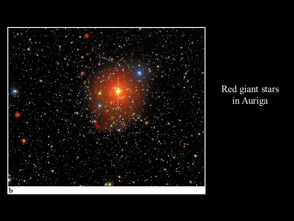 Red giant stars in Auriga