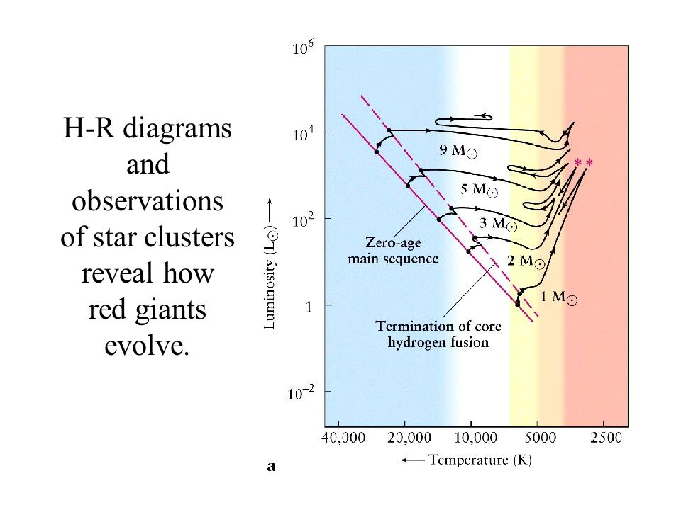 H-R diagrams and observations of star clusters reveal how red giants evolve.