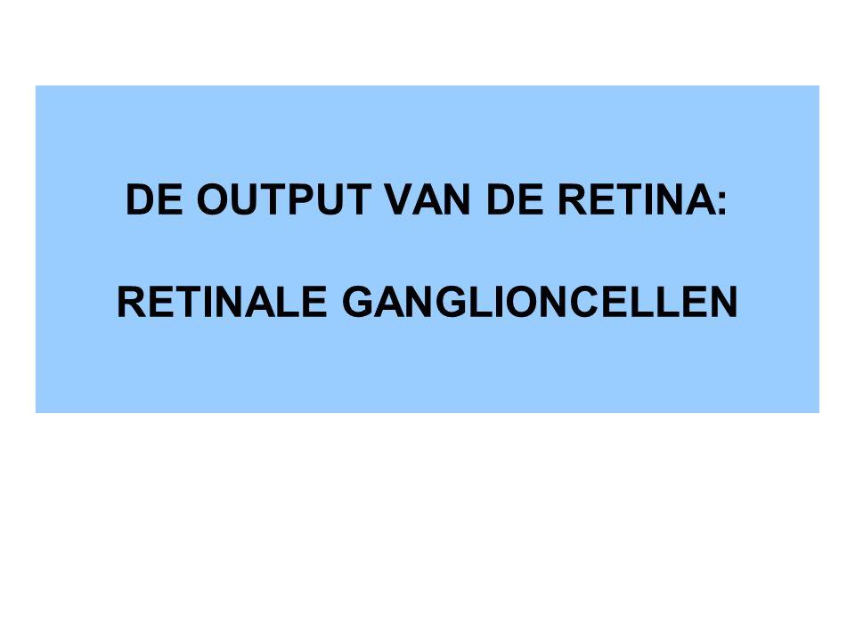 DE OUTPUT VAN DE RETINA: RETINALE GANGLIONCELLEN
